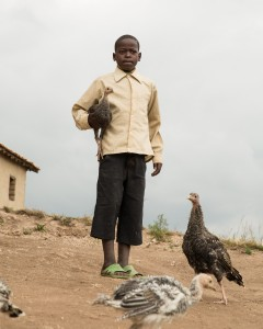 FXB Beneficiary Felix Twagirimana and chickens turkeys owned by family Muhanga district Rwanda
